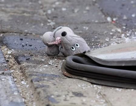 ВКировской области нетрезвый депутат насмерть задавил 12-летнюю девочку?