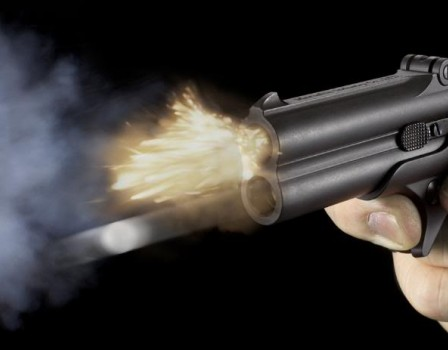 НаВятке начали проверку выстрелившего всобаку полицейского